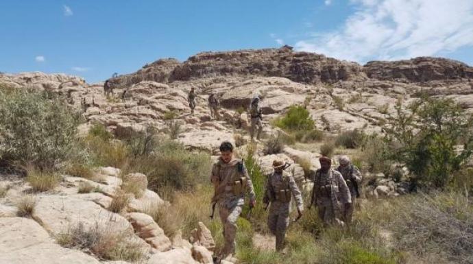 القوات الحكومية تتقدم في جبهة الحشوة-صعدة