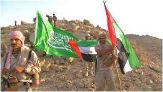 عن الدبلوماسية السعودية والإماراتية في اليمن